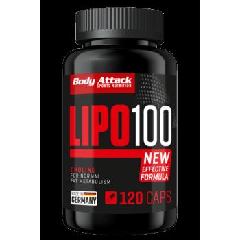 Body Attack LIPO 100 - 120...