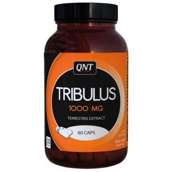 QNT® Tribulus