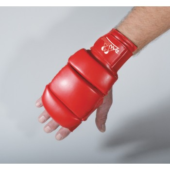 DANRHO Ju Jutsu Handschuhe