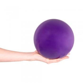 Yoga Ball inSPORTline 5 kg