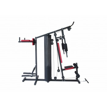 Multi-Gym Challenge