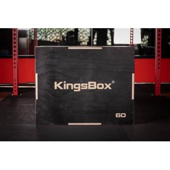 Kings Plyo Box