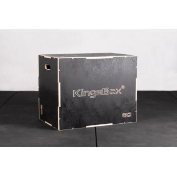 Royal Plyo Box