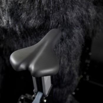 Concept 2 Fahrradergometer